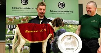Riistakoiravoittaja 2015 lyhytkarvainen saksanseisojanarttu Miska ja omistaja -ohjaaja Martti Rissanen Nilsiästä